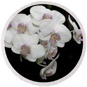White And Pale Pink Phalaenopsis   9920 Round Beach Towel