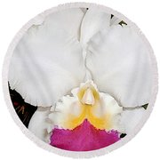 White And Purple Cattleya Orchid Round Beach Towel