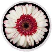 White And Red Gerbera Daisy Round Beach Towel