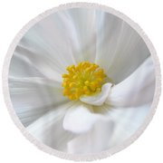 White Begonia Flower Macro Round Beach Towel