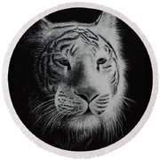 White Bengal Tiger Round Beach Towel