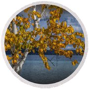 White Birch Tree In Autumn Along The Shore Of Crystal Lake Round Beach Towel