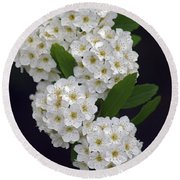 White Blossoms Round Beach Towel