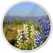 White Bluebonnets Round Beach Towel