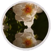 White Briar Rose Reflection Round Beach Towel