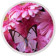 White Butterfly On Pink Gerbera Daisies Round Beach Towel