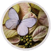 White Butterfly On Poinsettia Round Beach Towel