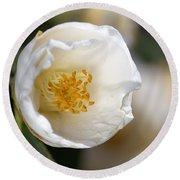 White Camellia  Round Beach Towel