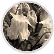 White Columbine Lanterns Monochrome Horizontal Round Beach Towel