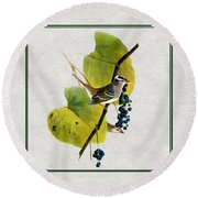 White Crowned Finch Square Round Beach Towel