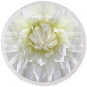 White Dahlia Floral Delight Round Beach Towel