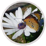 White Daisy And Butterfly Round Beach Towel