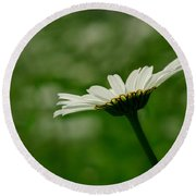 White Daisy Round Beach Towel