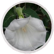 White Datura Round Beach Towel
