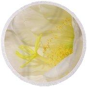 White Delicate Cactus Flower Round Beach Towel