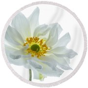 White Double Japanese Anemone Round Beach Towel