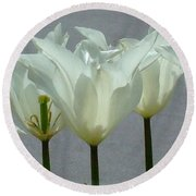 White Early Dawn Tulips White Bordered Round Beach Towel