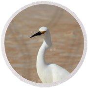 White Egret Round Beach Towel