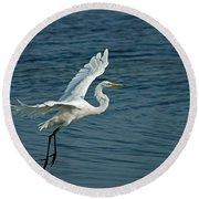 White Egret Landing Round Beach Towel