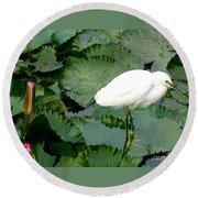 White Egret On Lilypads Round Beach Towel