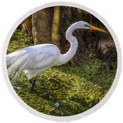 White Egret On The Hunt Round Beach Towel