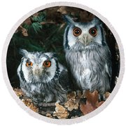 White Faced Scops Owl Round Beach Towel