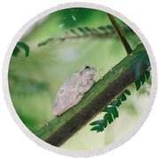 White Frog Round Beach Towel