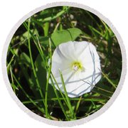 White Glow Round Beach Towel