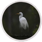 Heron Feathers In A Ruffle Round Beach Towel