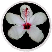 White Hibiscus Isolated On Black Background Round Beach Towel