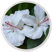 White Hibiscus Trio Waikiki Round Beach Towel