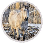 White Horse And Hey Round Beach Towel