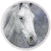 White Horse In Lavender Pasture Round Beach Towel