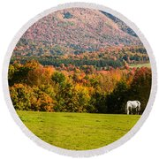 White Horses Grazing With View Of Green Mtns Round Beach Towel