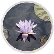 White Light Blue Tiped Waterlily Round Beach Towel
