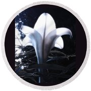 White Lily By Jan Marvin Round Beach Towel