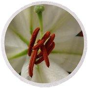 White Lily Round Beach Towel