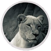 White Lioness Round Beach Towel