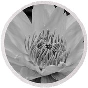 White Lotus 2 Bw Round Beach Towel