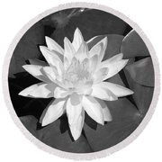 White Lotus 2 Round Beach Towel