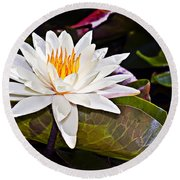 White Lotus Flower Round Beach Towel