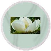 White Magnolia Elegance Round Beach Towel