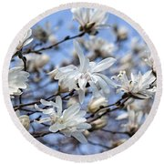 White Magnolia Magnificence Round Beach Towel