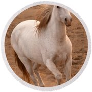 White Mare Approaches Number One Close Up Brighter Round Beach Towel