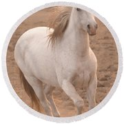 White Mare Approaches Number One Close Up Muted Round Beach Towel