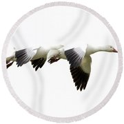 White On White Round Beach Towel by Mike  Dawson
