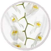 White Orchid-4783 Round Beach Towel