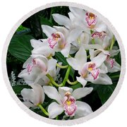 White Orchid In Full Bloom Round Beach Towel
