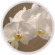 White Orchid Photograph Round Beach Towel