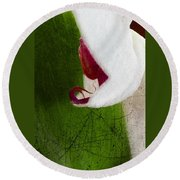 White Orchid Scratched Round Beach Towel